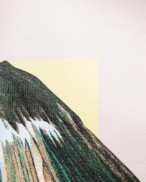 женская свитшот AALTO, сезон: лето 2016. Купить за 10900 руб. | Фото 4