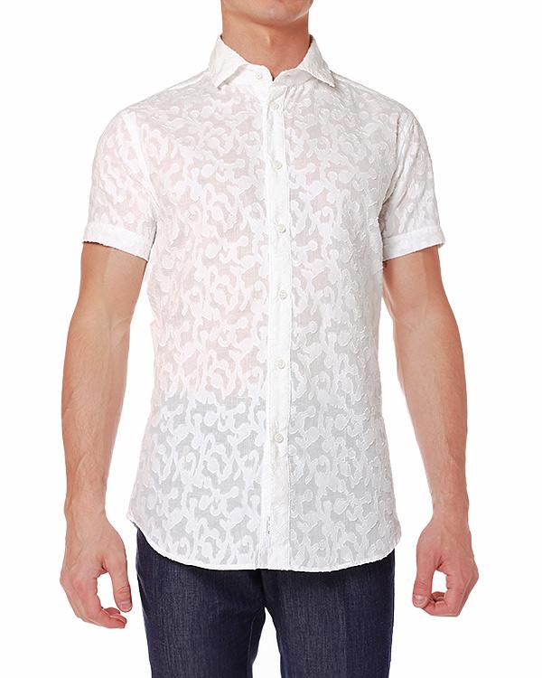 мужская рубашка Cavalli Class, сезон: лето 2014. Купить за 6600 руб. | Фото 1