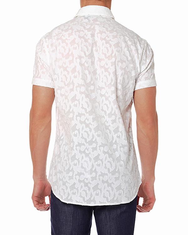 мужская рубашка Cavalli Class, сезон: лето 2014. Купить за 6600 руб. | Фото 2