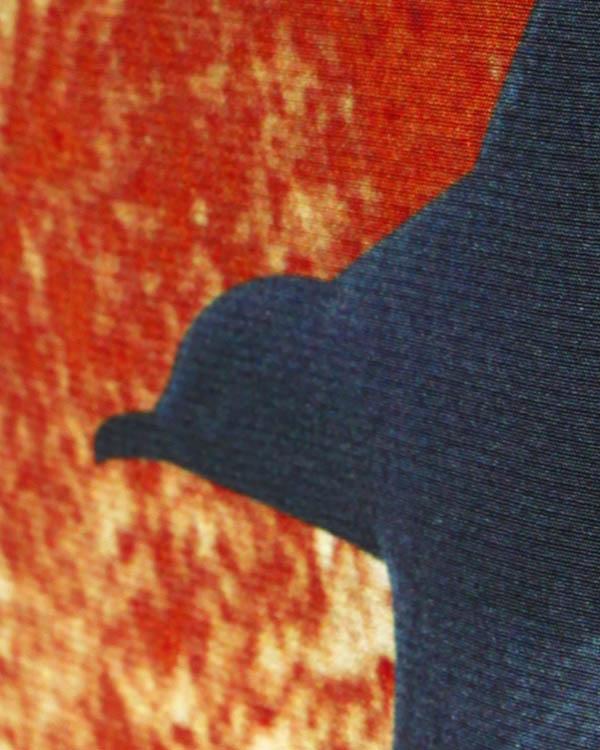 женская топ Emma Cook, сезон: зима 2013/14. Купить за 7400 руб. | Фото 4