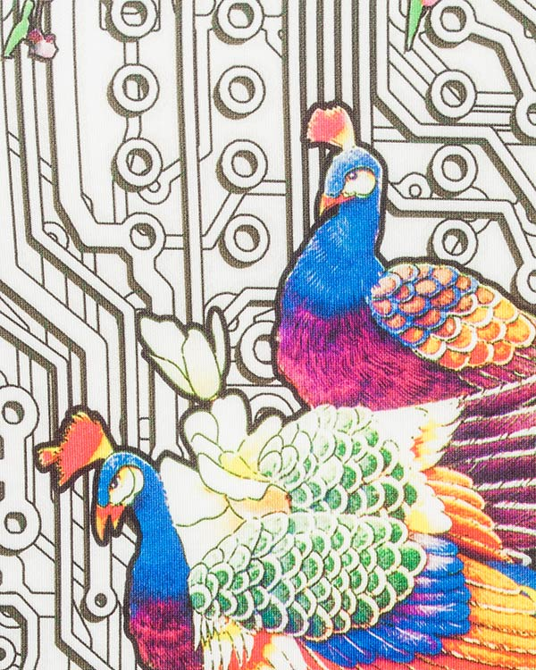 женская свитшот Piccione piccione, сезон: лето 2016. Купить за 13900 руб. | Фото 4