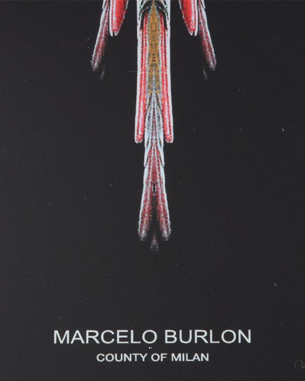 аксессуары чехол для iPhone Marcelo Burlon, сезон: лето 2014. Купить за 1500 руб.   Фото $i