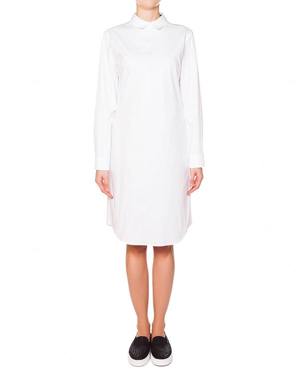 платье рубашка из плотного хлопка артикул JDE409A марки Jil Sander купить за 9500 руб.